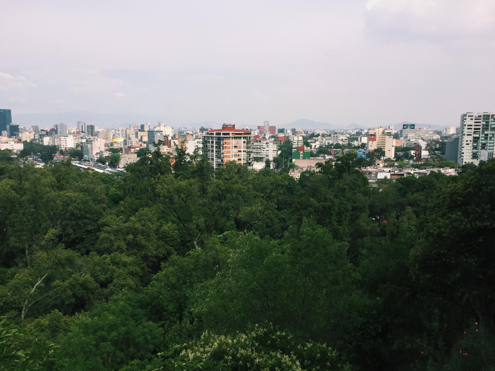 carmina tiscareño - castillo view