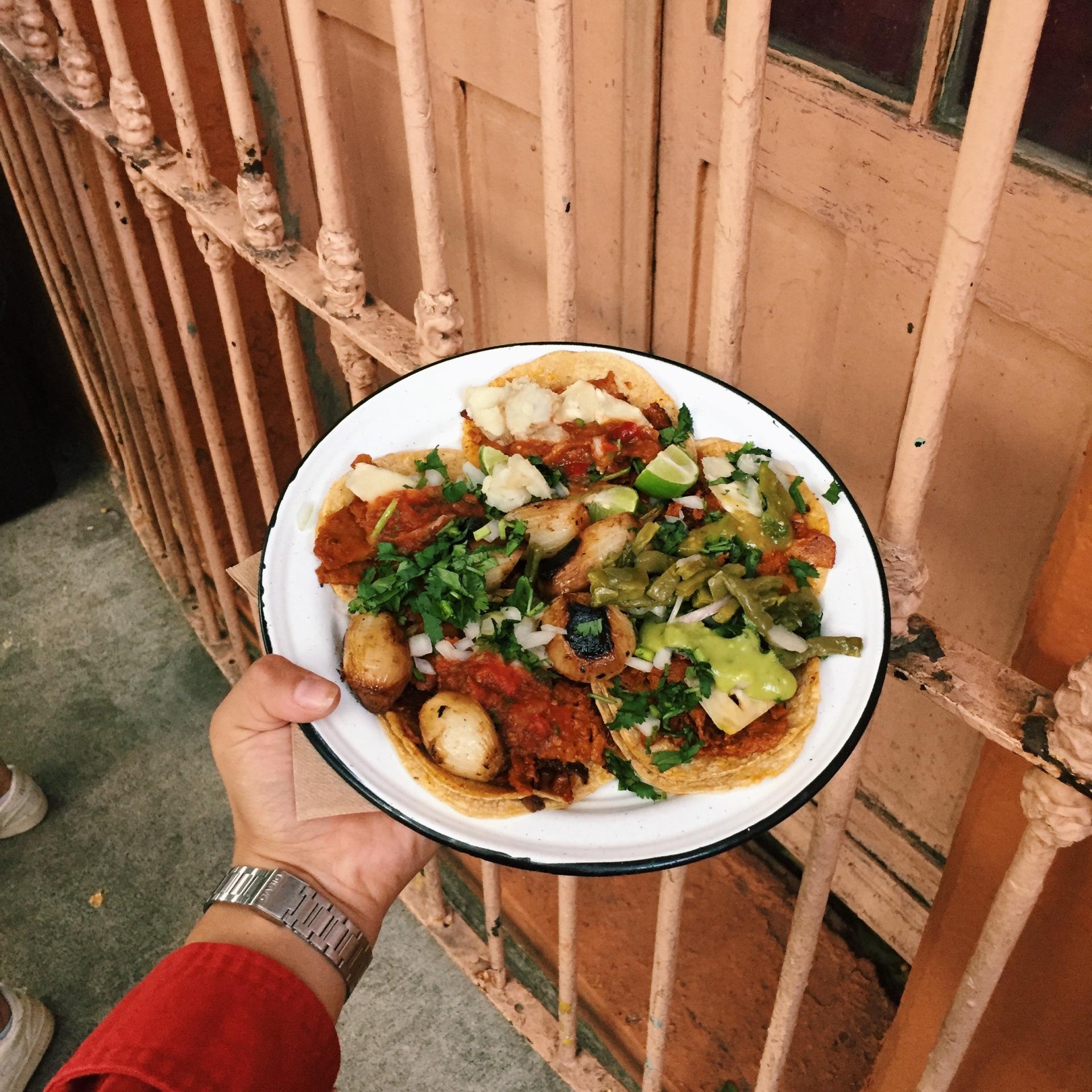 carmina tiscareño - taqueria vegana